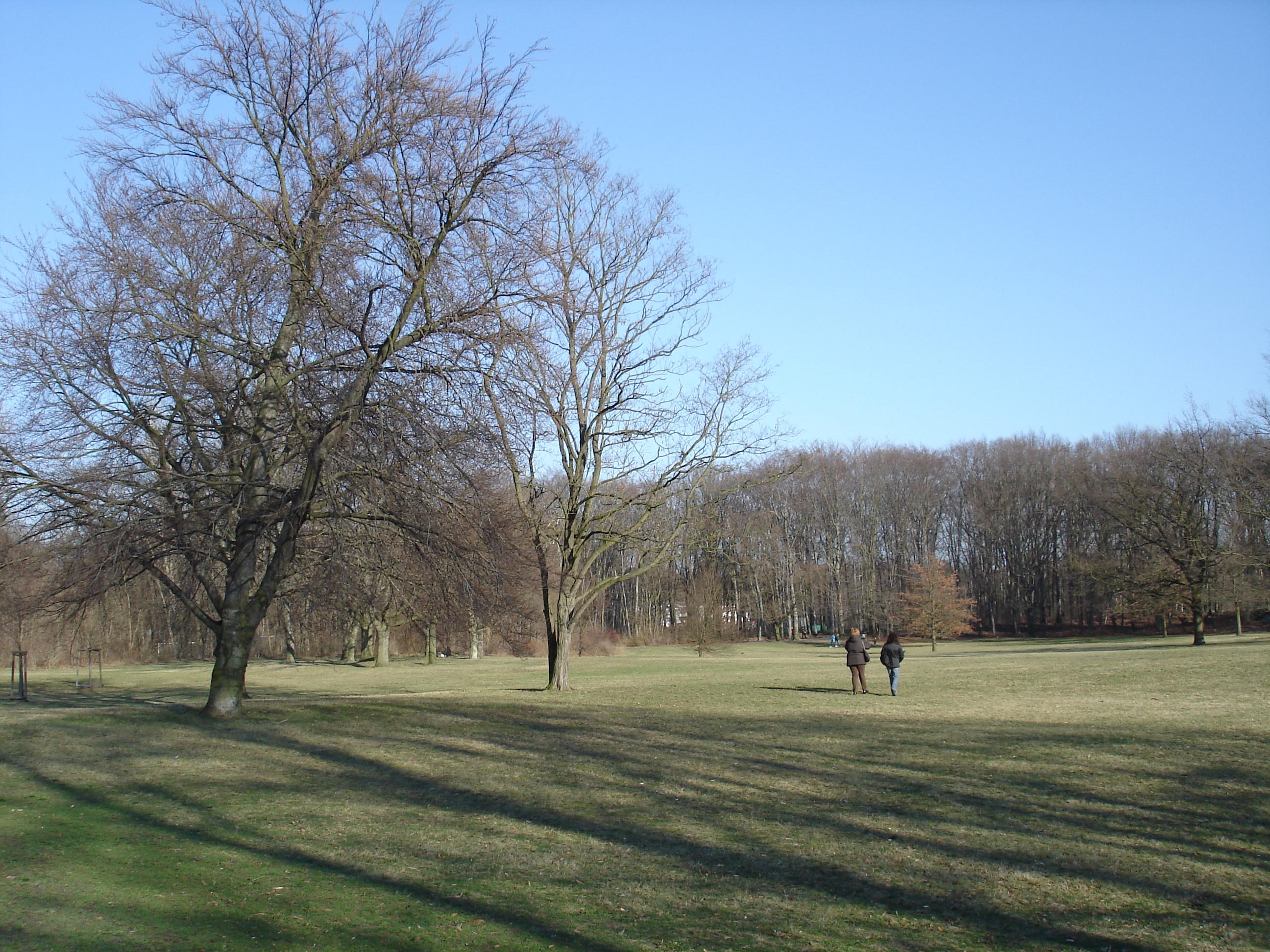Volkspark Rehberge. Bildquelle: ¹